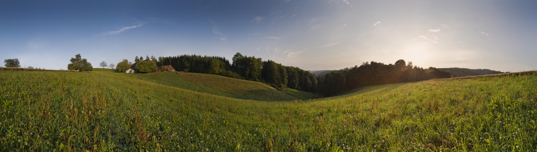 Weite Wanderwege durch Feld und Wald